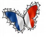 Ripped Torn Metal Butterfly Design With France French Tricolore Flag Motif External Vinyl Car Sticker 125x90mm